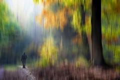 Autmn walk