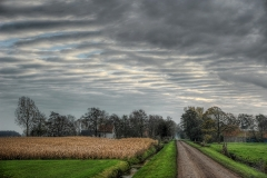 Frislan landscape